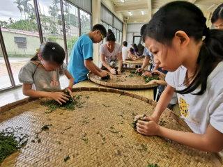 上福裕紅茶體驗莊園