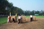 走馬瀨農場、台南二日遊