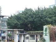 台北平溪悠閒之旅