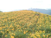 花東縱谷二日遊