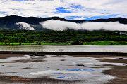 池上稻米原鄉之旅