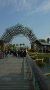 雲林農業博覽會自由行(II)