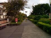 騎鐵馬遊台東
