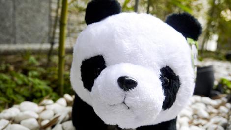 親子玩墾丁∼入住墾丁假期渡假飯店+鹿境票券!加碼送超Q熊貓∼