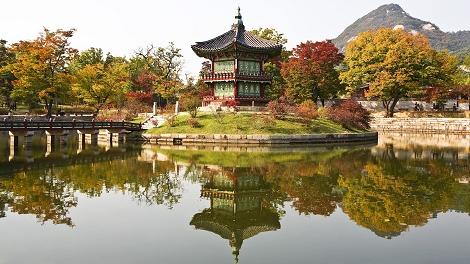 《Free@KOREA》Hostel Tommy(原黃磚2號) 酒店自由行3天(可續住延回)-韓亞航