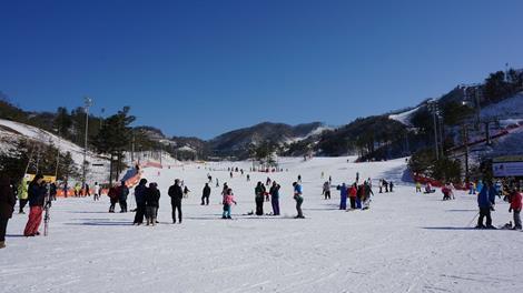 滑雪會上癮(SKI、六人成行)∼冬戀韓國、洪川大明雪場渡假村五日(含稅)