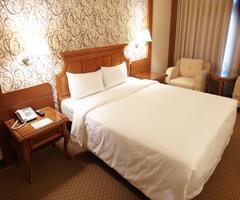 桃企大飯店