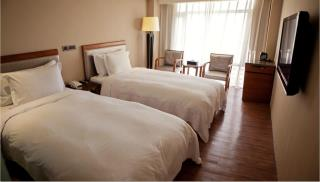 桃園蜜月世紀大飯店