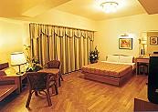 三博大飯店-貴賓房