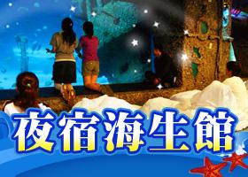 季節限定!【海生館之觀珊望海半潛艇巡禮】一泊三食(成人*1+兒童*1)