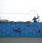 布袋漁港漁市